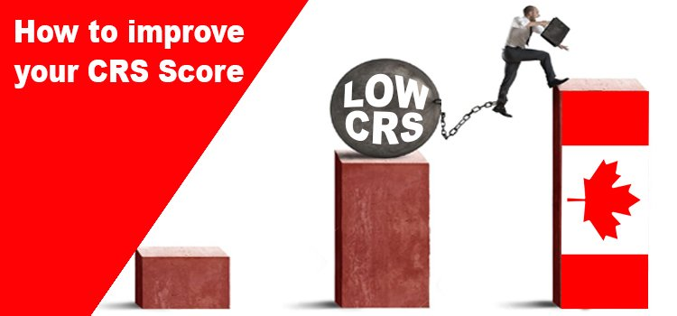 How to improve your CRS score?