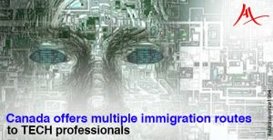 Tech workforce are sure to find their way to Canada with multiple immigration pathways